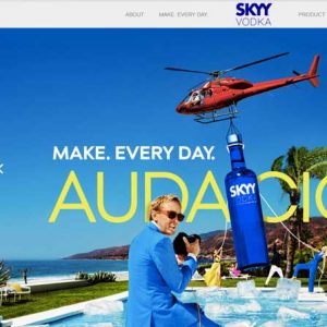 Website Design Company - Skyy Vodka
