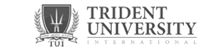 Digital Agency for Trident University