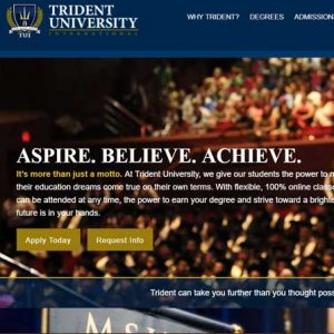 Website Design Company - Trident University