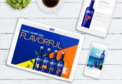 Web Design Company - Skyy Vodka